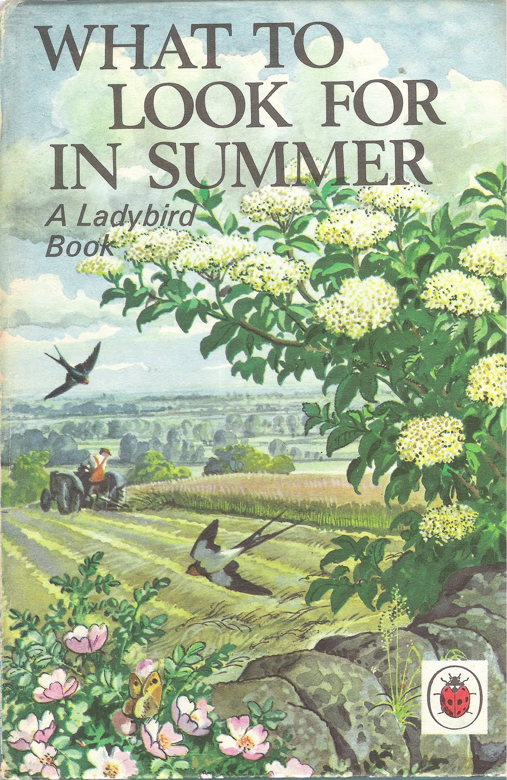 Ladybird Book Cover Pictures ~ Breathe in and out now repeat for as long possible