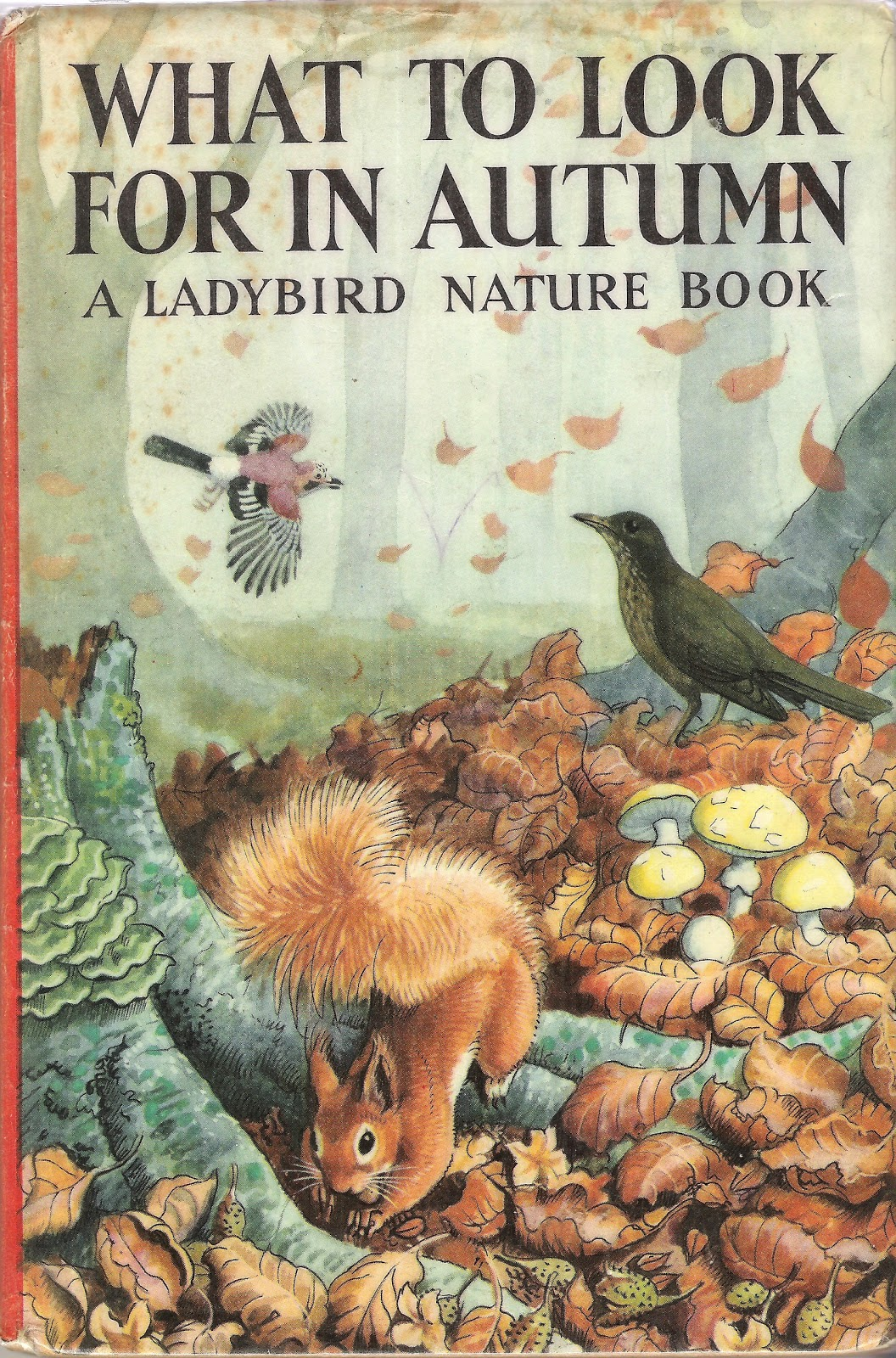 Ladybird Book Cover Pictures : Breathe in and out now repeat for as long possible