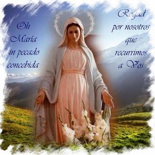 El santo de hoy... 1+VIRGEN+DE+LA+MEDALLA+DE+LA+MILAGROSA