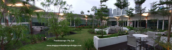 Garden And Landscape Pte : Singapore landscape design january