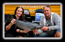 Norgesmestere 2010