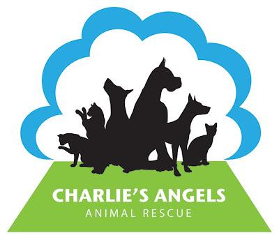 charlies angels logo. charlies angels logo.