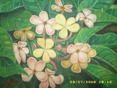 sisi lain bunga kamboja