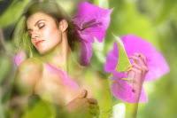 choose buy apply summer perfumes fragrances