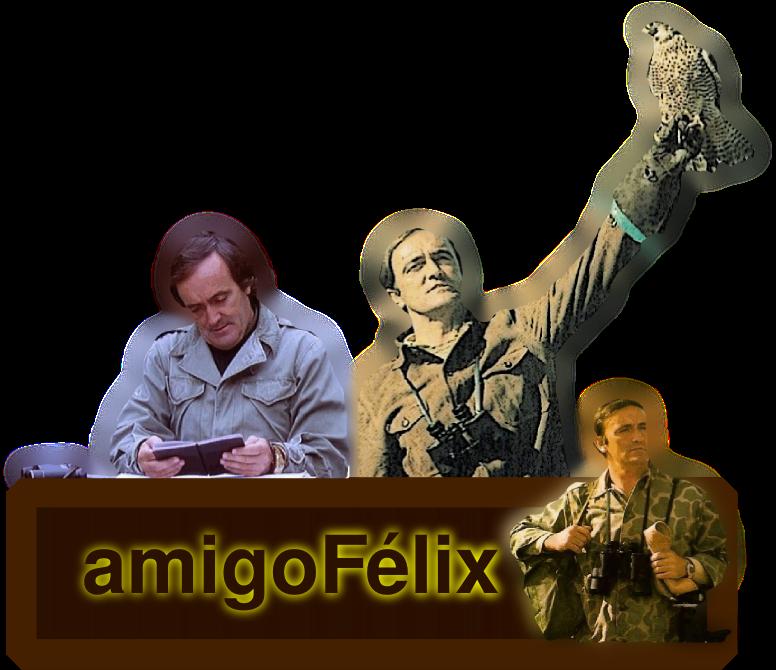 amigofelix