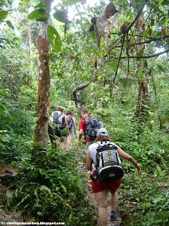 Trek dans la forêt Thaïlandaise