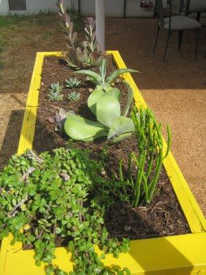 antes y depues, de archivador a jardinera