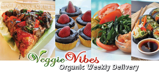 Organic Gourmet Raw Food Delivery