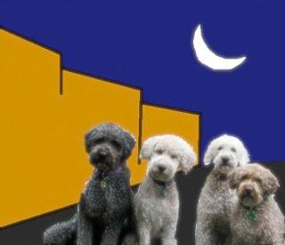 quattro cani di ronda
