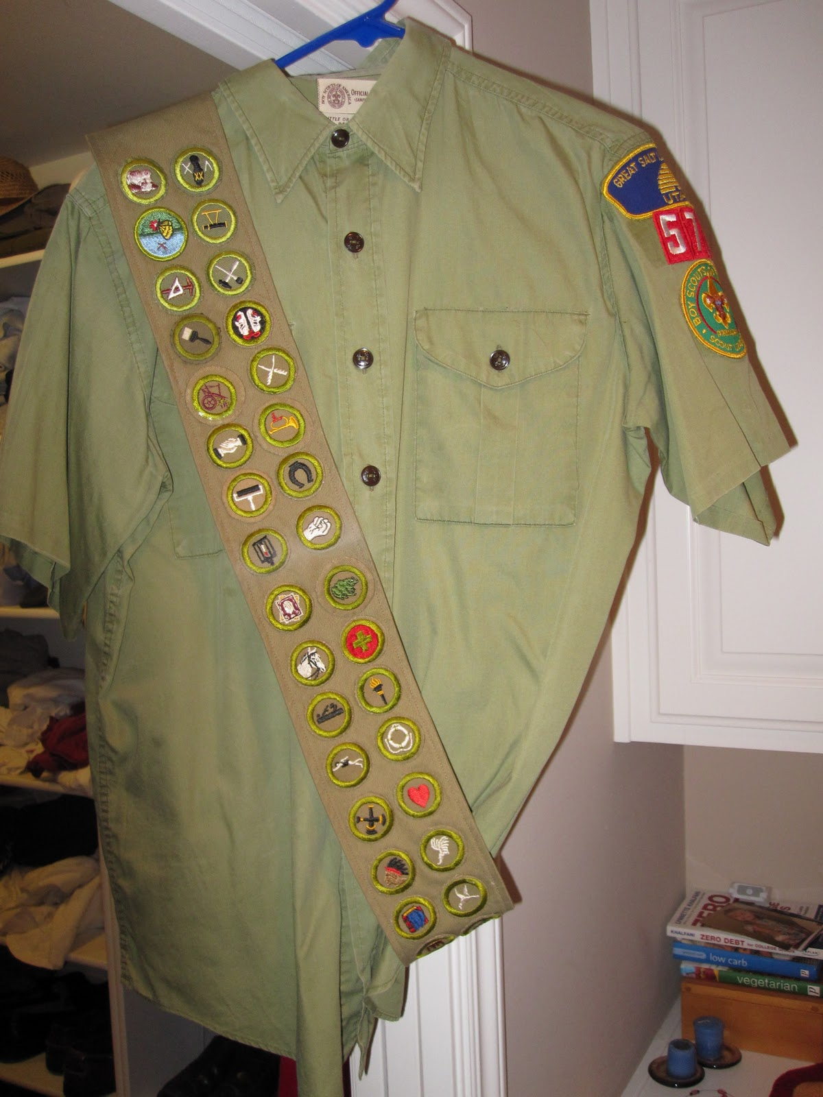 Displaying (17) Gallery Images For Merit Badge Sash...