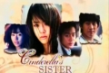 Cinderella's Sister Feb 28 2011 Episode 29 Replay (Tagalog)
