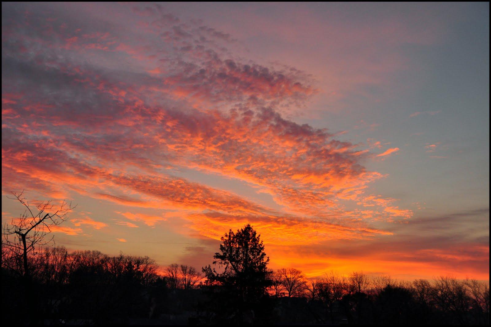 sunrise%2B1-1-11.jpg