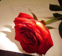 Love Liberates Carta De Uma Garota Apaixonada 1 Mês De Namoro