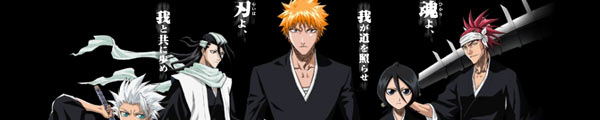 BLEACH VIDEO VAULT