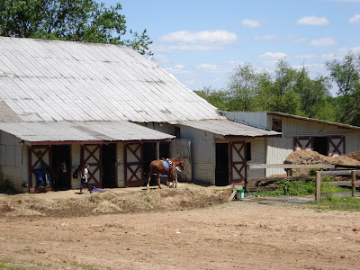 Woodland Horse Center: Barn