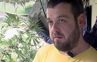 despite obama promise, dea still raids medical pot growers