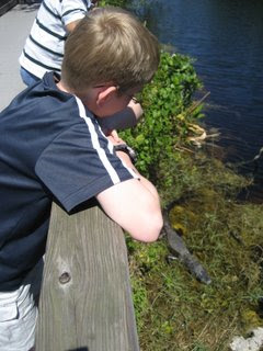 Spencer and an Alligator