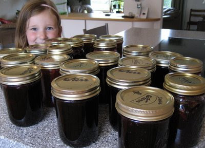 Wild Alaskan Blueberry Jam