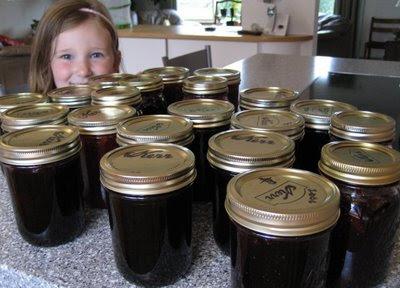 Wild Alaskan Blueberry Jam