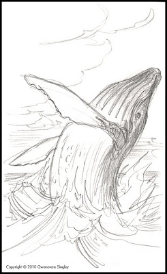 Whale breaching drawing