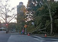 tornado damage-street corner