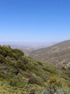 Idyllwild vista