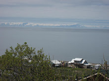 Looking Out to the Aleutian Range