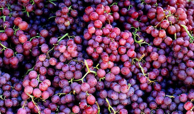 Wino z winogrona