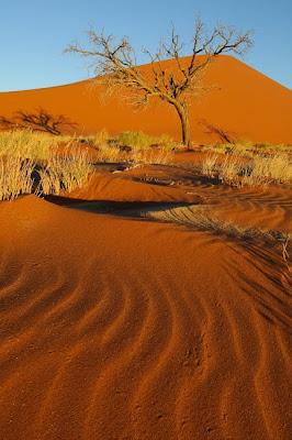 c4 images and safaris, erongo, namibia, sesfontein, sossusvlei