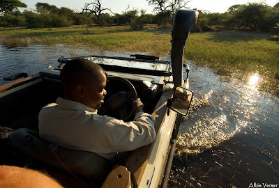 chiefs island, albie venter, photographic opportunities, okavango delta,