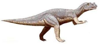 Ceratosaurio
