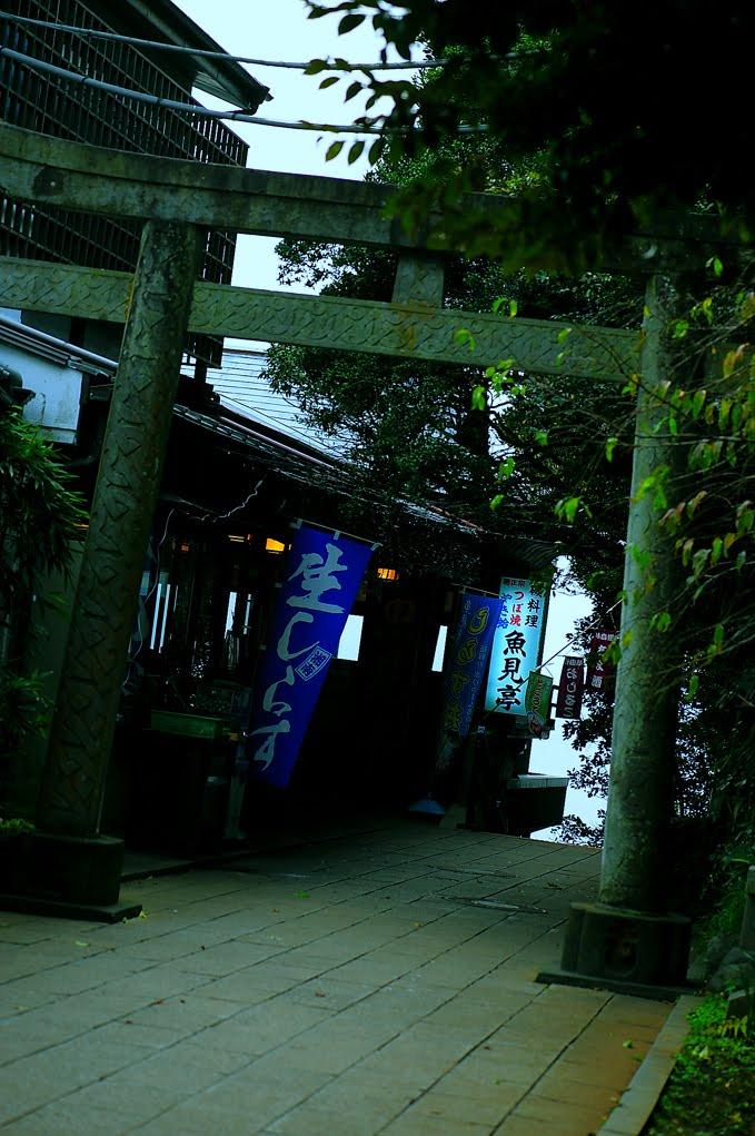 [江ノ島1210DSC_0257.jpg]