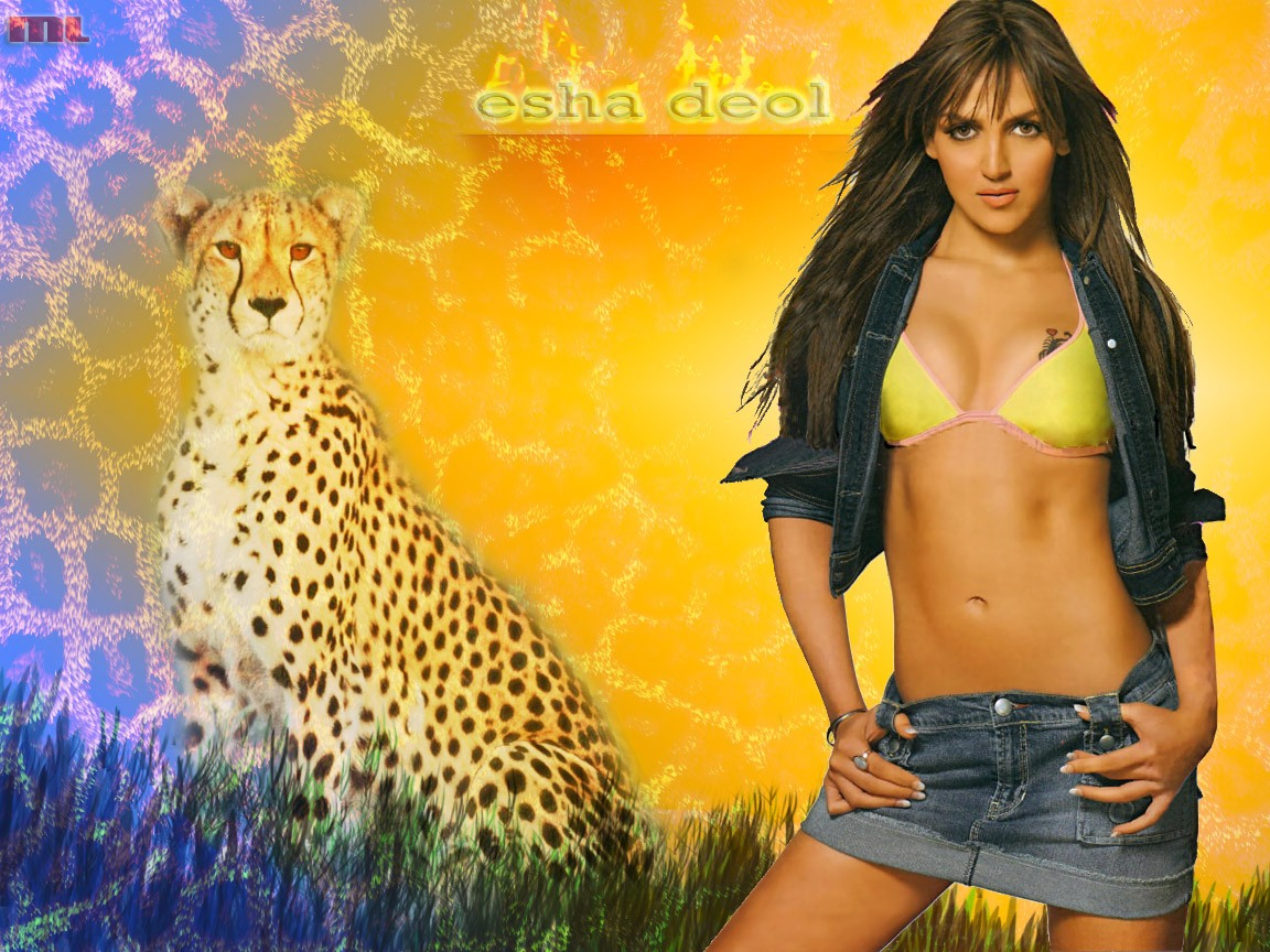 http://4.bp.blogspot.com/_H8Y9XEQXkGo/TS3ueB-go8I/AAAAAAAAM1U/jtpe5yvYzbg/s1600/Top-2011-Actress-Photo-Wallpaper-3.jpg