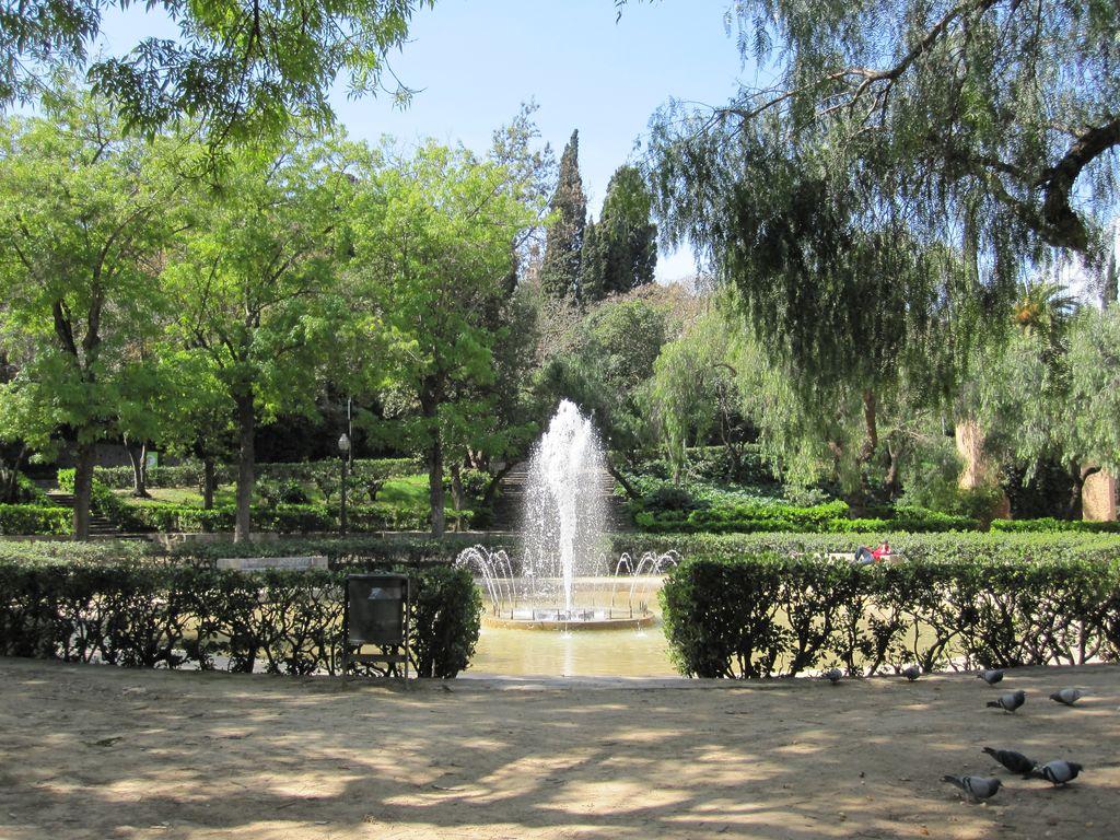 Hierbas medicinlaes plantas montju c en primavera - Jardines de barcelona ...