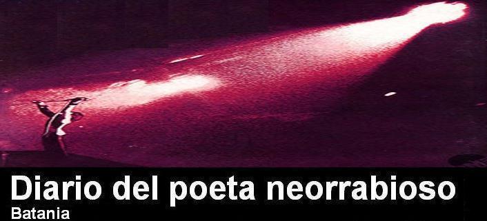 Diario del poeta neorrabioso