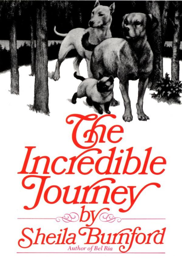 Inspired to Read: The Incredible Journey
