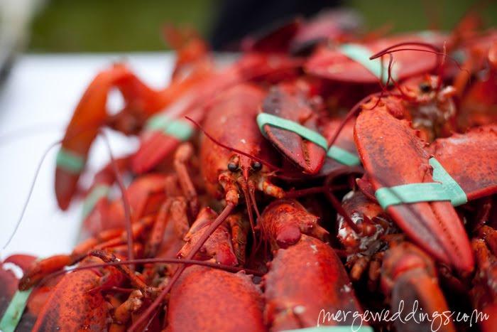 [lobstah]