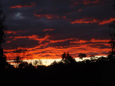 wonderful red sunset
