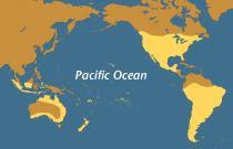 tinh yeu MinhThuan la chiec cau noi lien doi bo Pacific Ocean.