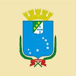 Vereadores de São Luís