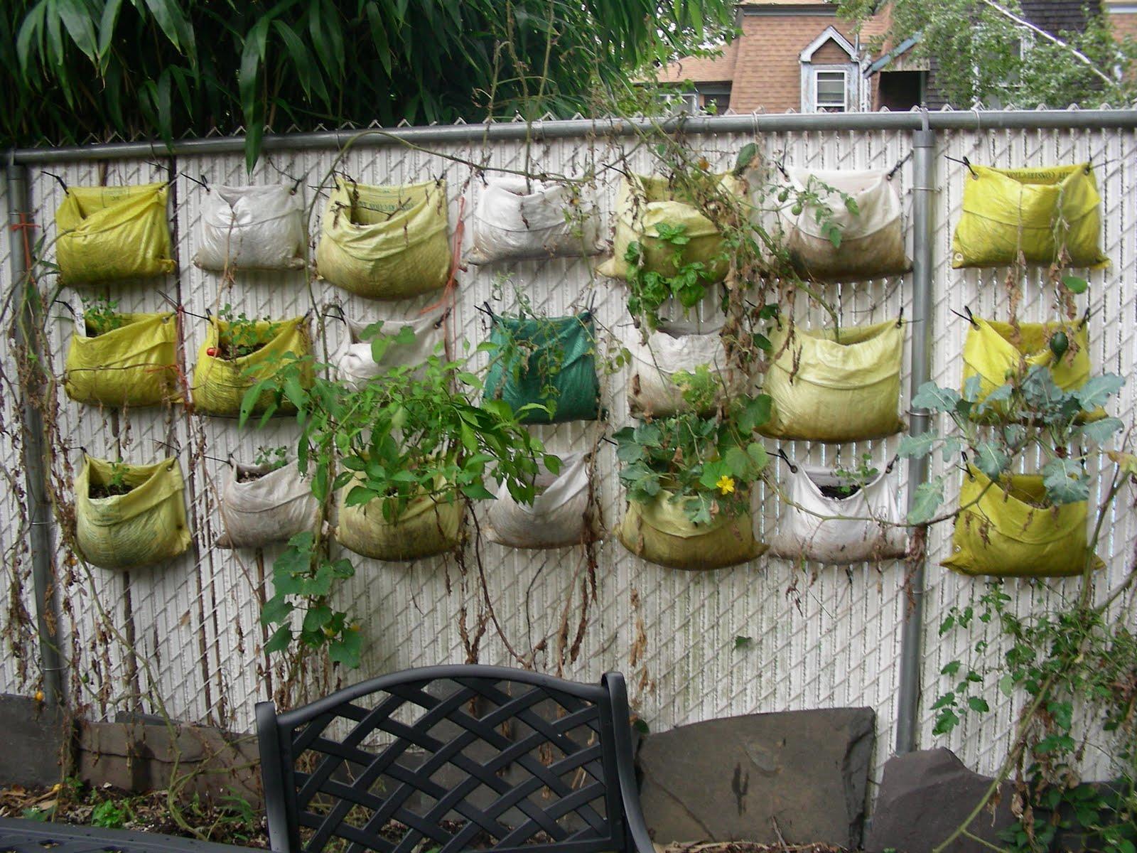 Commmunity gardening vertical gardening update ii - Vertical garden ...