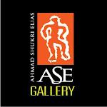 Visit ASE gallery
