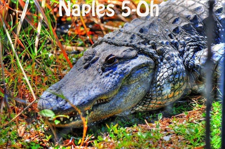 NAPLES 5-0H