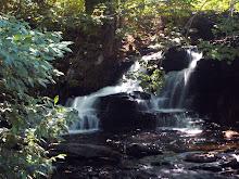 Shohola Falls 2