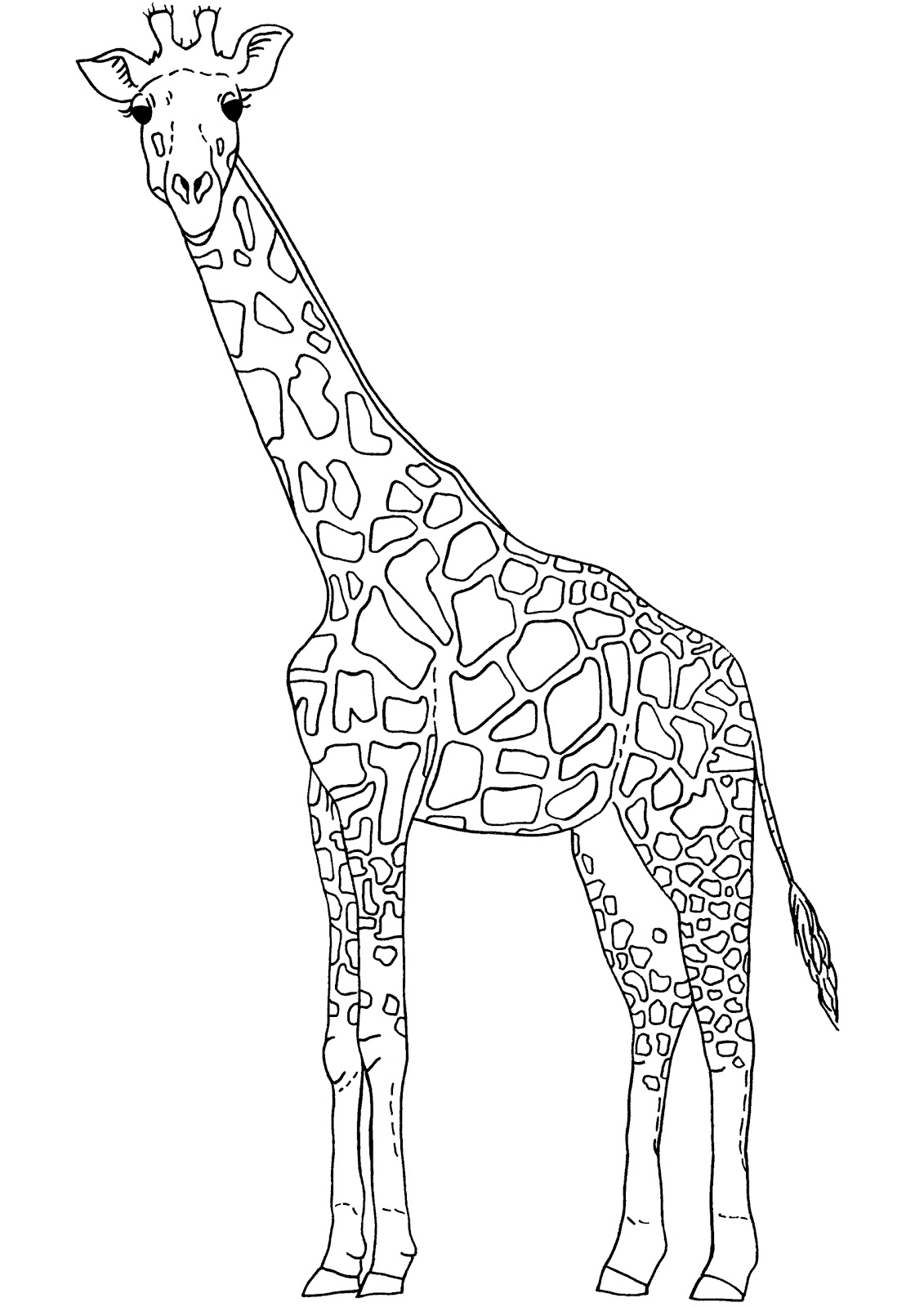 Outline of Giraffe for Preschoolers http://primaryschoolteachersartforum.blogspot.com/2010_12_01_archive.html