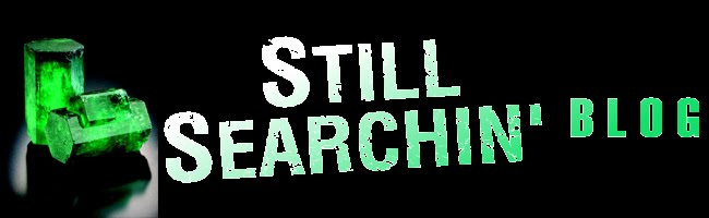 STILL SEARCHIN' BLOG by THE SILVER CHILD & MSA