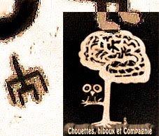 Chouettes, Hiboux et Compagnie