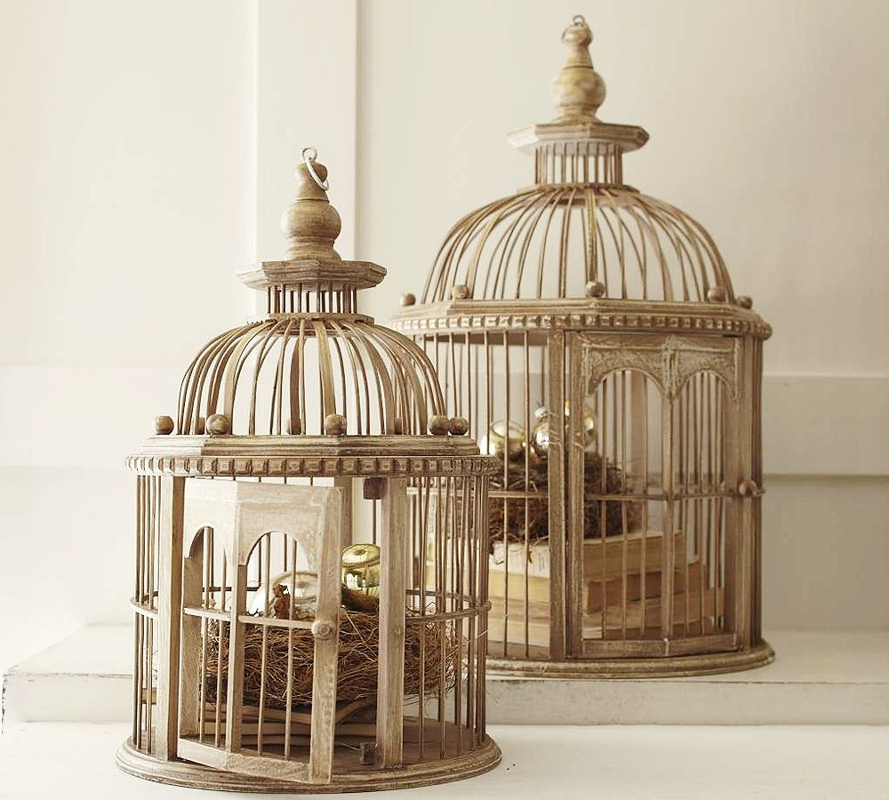 Primed4design design tip of the week for Bird home decor