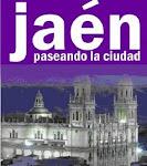 VISITA GUIADA JAÉN