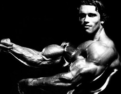 arnold schwarzenegger now and before. arnold schwarzenegger now fat.